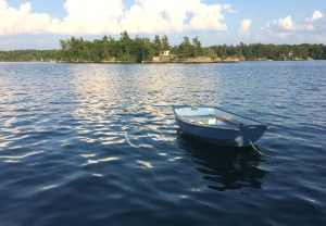 A small rowboat in the river with an island in the background