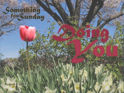 A red tulip standing alone in a sea of daffodils. Text: Something for Sunday; August 4, 2019; Doing You