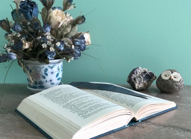 A hardcover book, opened on a marble table, with a leather bookmark, against a blue-green wall. There's a ceramic pot of blue and white flowers, a stone containing white and purple crystals, and a little owl sculpture with large eyes.