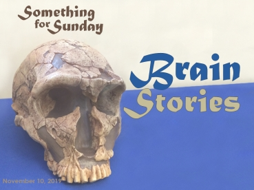 An image of a reconstructed human skull. Text: Something for Sunday; November 10, 2019; Brain Stories