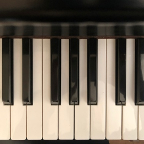 A closeup of the keys on a piano, going from C to the E 10 steps higher