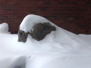 A large boulder atainst a brick wall, partly buried in a snowdrift